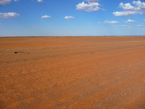 Road to Mutawinji NP